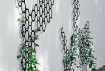 As the Garden Grows / by Spongetta