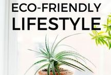 Eco Friendly Lifestyle/Homedecor etc..