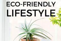 Eco Friendly Lifestyle/Homedecor etc..