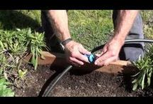 DripWorks DIY Videos / Videos showing you just how easy drip irrigation can be. / by DripWorks