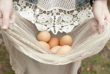 Chickens and Coops / Adorable chicken coop ideas and how to take care of my chicken ladies.