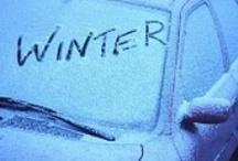 Winter / by Martha Gill