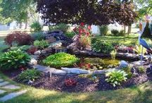 Customers Creations / Beautiful pictures of our lovely customers gardens and more. Thank you all for submitting images of your hard work! You've all outdone yourselves!  / by DripWorks