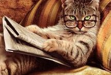 Paws for Reading / adorable animals reading books