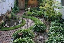 My Secret Garden / by Andrea Potter-Carpenter