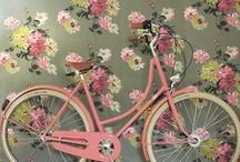 bike tour? / by M Barton