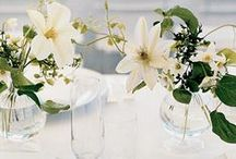 wedding florals  / by Ariana Clare