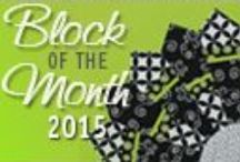 """Quilts—Block of the Month / Nancy Zieman of TV's """"Sewing With Nancy"""" shares her 2015 Block of the Month series named 2015 Adventure Quilt.  Join us on the adventure."""