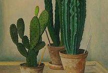 Green Thumbs & Patio / by Graeme McCree