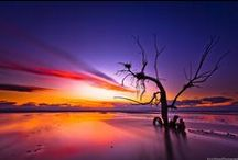 THE COLOURS OF LIFE / All the beautiful colours naturally occurring in life, captured by camera