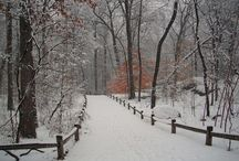 Winter / All things wintery...