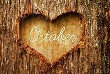 Oh, Fall... / by Jennifer Kinkade