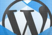 Business - WordPress / by Birth With Lisa Doula Services