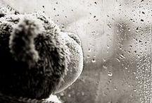 RAIN / Photographs of rainy days, the feel of rain