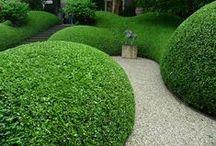 Landscaping / Design Ideas for the Garden