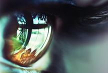 EYE DO / Eyes are the window to the soul of all earthly creatures