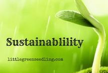 Sustainability / What is true sustainability, and how can we achieve it? These articles seek to answer those questions.