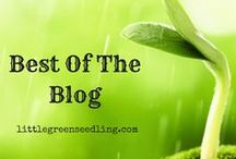 Best of Little Green Seedling / Posts from the Little Green Seedling blog. Posts cover topics relating to veganism, sustainability/green living, minimalism, saving money and simple living.