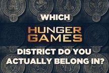 Hunger Games Trilogy Party Ideas
