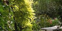Garden Visit / Previews of th inspiring gardens available only through the Edenpont. For more details and actual dates link in bio.