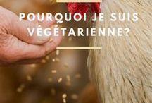 CUISINE VEGGIE / Vous êtes veggie? Ce tableau liste les recettes végétariennes qui me tardent de tester et de goûter :)