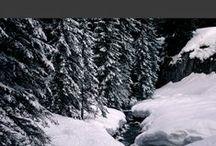 SAISON HIVER / Vous aimez le froid, la neige, les cheminées, le ski, le thé et les chaussettes en pilou-pilou? Ce tableau devrait vous plaire!