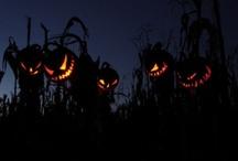 Halloween / by Jackie Barnes