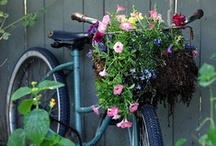 gardening galore