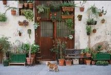 Home&Decor||/////.\\\|| / For Home, Outdoor living, furniture..