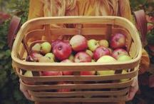 How 'Bout Them Apples / by Delaney Graves