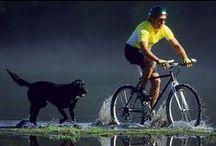 cycling / by Deborah Appiarius