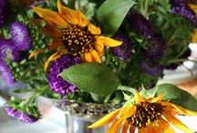 Summer Table Scapes / Designing Beautiful Tables Scapes