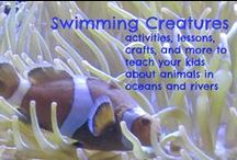 Swimming Creatures / Swimming creatures of the fifth day by apologia activities and experiments to use in your homeschool or school / by Ticia Adventures in Mommydom