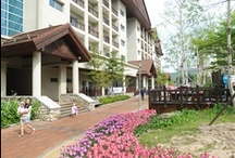 HIGH1 RESORT'S Mountain Condominium External Scenery / Photo sketch in the High 1 Ski Resort in Jungsun, South Korea on May 22th, 2013.  English homepage.  http://www.high1.com/Hhome/main.high1 Korean homepage. http://www.high1.com/Hhome/main.high1 Blog.   http://blog.naver.com/high1cs FaceBook.  http://www.facebook.com/high1forcs Tweeter.  https://twitter.com/