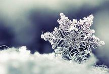 Winterlicious ❄️