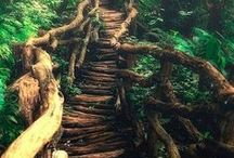 Awesome Stairs, Pathways, Doorways, and Byways