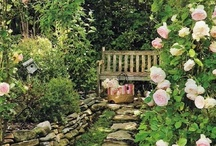 Backyard Bliss / by Megan England