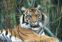 Pinturas Digitales / Pinturas Digitales en Photoshop y Corel Painter X