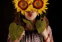 Sunflower. / Bright, yellow and floral.