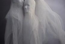 Halloween / by Andrea Leiferman