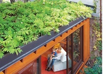 green roofs / not only are green roofs ecologically sound (roof cooling, reducing runoff) they provide more square footage for creative plantings