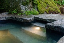 pools / examples of pools that and beauty, fun, and value to any backyard