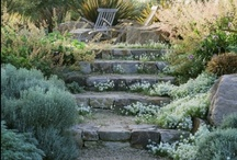 steps and stairs outdoors
