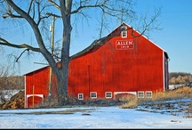 Barns in Lenawee County / by Lenawee County