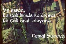 Süreyya Cemal