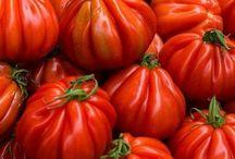 Tomato / Томаты