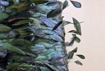 Fabulous with Feathers / by Hobby Lobby