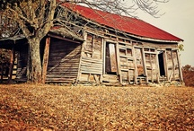 Abandon & Old / by Susan Musso
