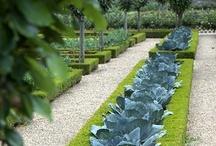 Garden Design   Outdoor Spaces / by Jonathan Edwards