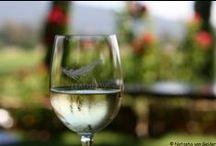 ♥ Wine Tasting Travel ♥ / Inspiration and information for wine tasting holidays around the world - New Zealand, Australia, France, South Africa, England, Italy...